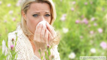 Hay Fever Snoring – Swollen Mucous Membranes due to Allergies